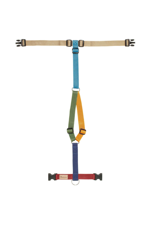 Harness Multicolor