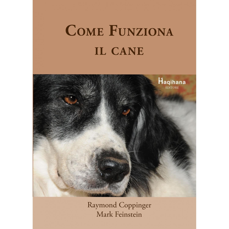 Come funziona il Cane (ITALIAN ONLY)